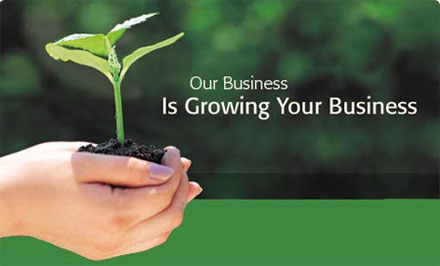 Jim business is growing your business